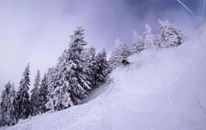 burton ltr, freeride, learn to ride, snowboard, powder, Progression, massif postavaru